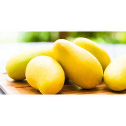 Yellow Alphonso Mangoes