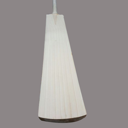 AB India English Willow Cricket Bat