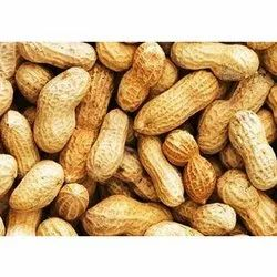 1 Month Raw Groundnut, Packaging Type: Hdpe Bag, Packaging Size: 25 Kg and 50 Kg