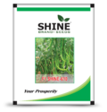 Dried Green Hybrid Chilli Seeds - F1 Shine 610, Packaging Type: Plastic Pouch, Packaging Size: 10 Gm