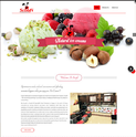 Food Industry Web Development Service