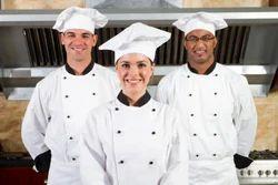 White Chef Coat, Size: Custmized