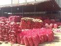 Fresh Red Onion 06