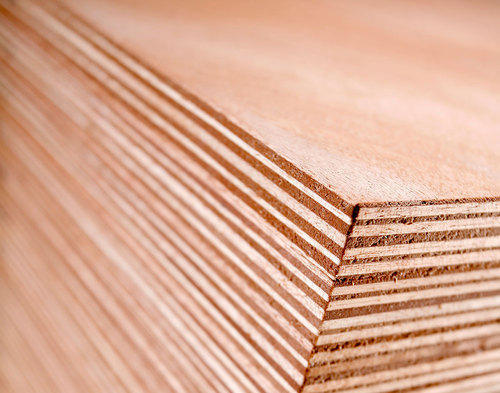 real commercial plywood economical for indoor rs 45 square feet