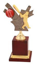 Cricket Golden Trophy