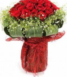 50 Red Gracy Rose