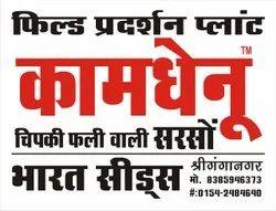 White SUNPACK SHEET Multi Colour Offset Printering Services, in SRI GANGANAGAR