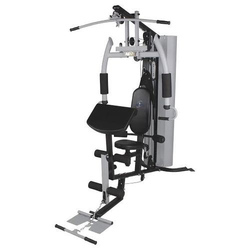 Stainless Steel Aerofit Multi Workout Gym