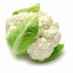 Hybrid Cauliflower Seeds Analika F1