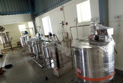Mini Mango Juice Processing Plant