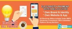 Electricity Payment Whitelabel Portal