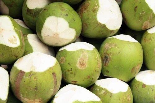 Tender Coconut, Fresh, Dried & Preserved Fruits | CNJ