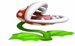 Flash Animation Solutions