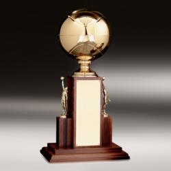 Academic Metal Trophy
