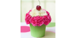 Yuzu-Linsen mit Kalettes (Flower Sprout), Spinat und