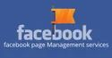 Facebook Page Management Services In Pan India