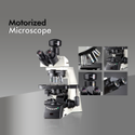Dewinter Ultima Motorized Microscope