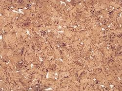 Cork Wall Covering White Rivera Tiles