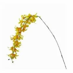 Yellow Orchid Hanging Stick