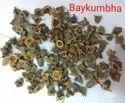Baykumbha