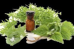 Ayurvedic Herbal Franchise in Kollam- Kerala