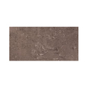 Tropical Brown Composite Marble