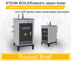 Fully Automatic Electrically Heated Steam Boiler