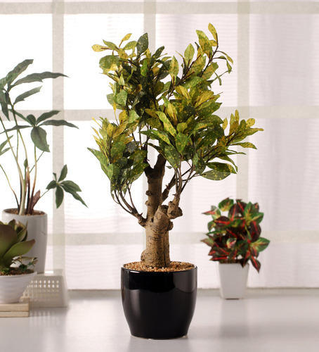 Green Yellow 54 Cm Tall With Pot Artificial Croton Plant In A Ceramic Vase Rs 2390 Piece Id 10464494133