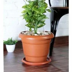 Brown Round Flower Pots