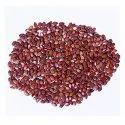Ssf Brown Leucaena Leucocephala(subabul) Seeds, Packaging Size: 1-50kg