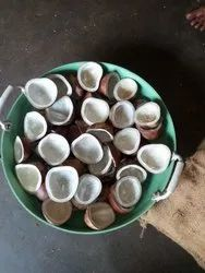 Loose White Dry Coconut, For Cooking, Packaging Size: 10 Kg