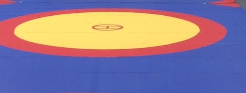 Roll-Up Wrestling Mat