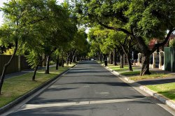 Urban Forestation Service, Gujarat