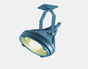 LF 31400 Flameproof Lighting