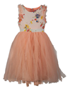 Beanie Bugs Orange Kids Dress