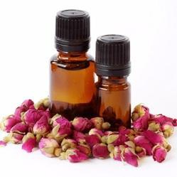 Lotus Pink Absolute Oil