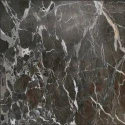 Grey Chigen Marble