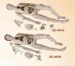 High Quality Nurse Training Doll (Male & Female) Unisex