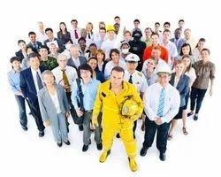 Labour Supply Service
