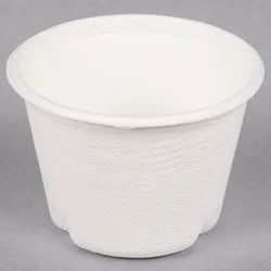 Bagasse Cup