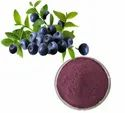 Blueberry Extract 10:1