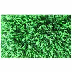 Mat M-4 Artificial  Wall Grass