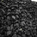 India Steam Coal, Grade Type: Light And Anthracite