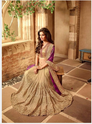 Opulent Net Beige Patch Border Work Designer Bridal Saree