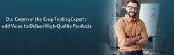 Test Advisory Services