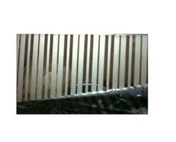Color Pattern Stainless Steel Sheets