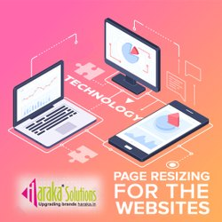 Page Resizing for the Websites