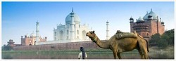 Delhi And Jaipur And Agra Tour Services