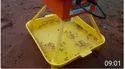 Plastic Solar Insect Trap