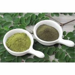 Moringa Dry Powder